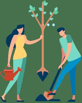 impact des arbres sur l'environnement